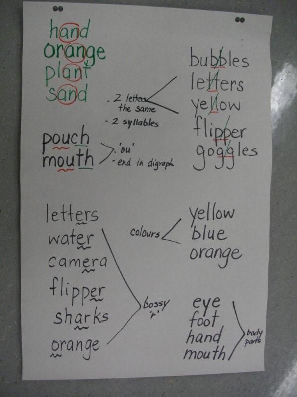 Flipper  Letters