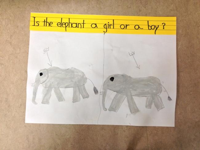 Essay About Elephant in Hindi-language