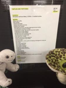 turtle list